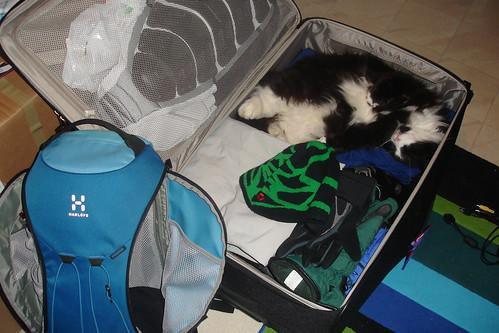 Figaro åker till alperna?