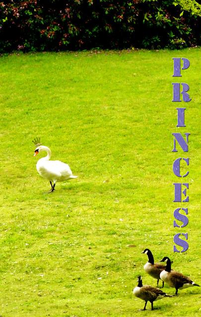 garden scene princess