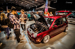 the best Lupo of the show UD14 (Creaney) Tags: show shop joke low it best win lupo howd