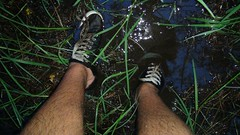 wading through swamp (wetnature94) Tags: wetfeet soakedshoes hiking hikinginswamp mud mussyshoes gotmyfeetwet ruinedshoes