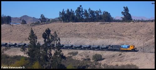 Tren con hierro