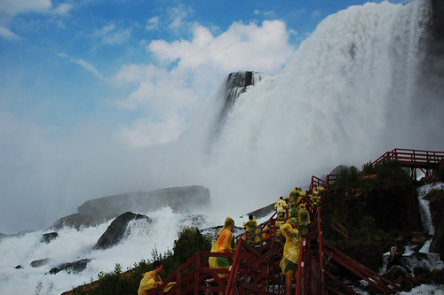 hurricane deck