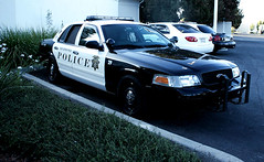 Richmond California K-9 Car 29 (Steven P. Moreno) Tags: dog protection k9 patrolcar richmondpolice