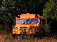 Running Late (RLucas2009) Tags: school bus students overgrown yellow rural late