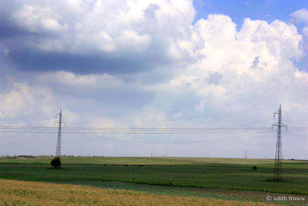 3 colour field