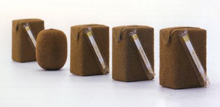 Kiwi Juicebox Design