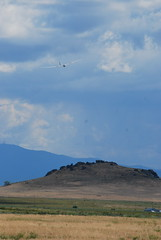 DSC_0561 (ariel.kahn) Tags: gliding montague yreka glidingcompetition