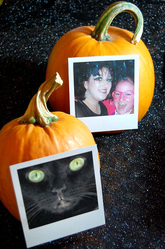 polaroid pumpkins