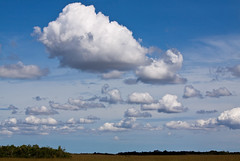 Amenza tormenta?? (lady_blue_andorra) Tags: sky florida cloudy cielo nubes everglades evergladesnationalpark nationalparkusa