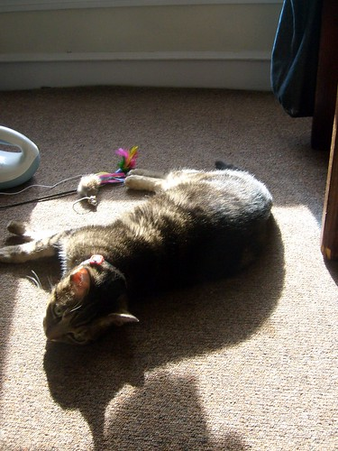 Vala in the Sun