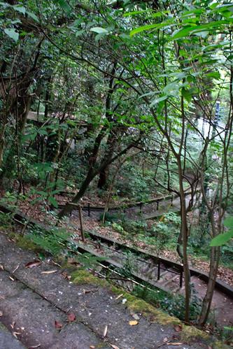 08.10 Jigenji Park - Kagoshima 4