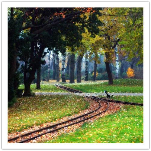 Orton Autumn