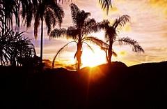 enquanto o lobo não vem ... (Edison Zanatto) Tags: sunset brazil sky naturaleza sun flores minasgerais sol southamerica nature brasil skyline backlight sunrise atardecer soleil natureza natur paisaje paisagem céu pôrdosol cielo 夕陽 crépuscule landschaft sonne paesaggi ocaso sonneuntergang alvorada controluce anochecer anoitecer coucherdesoleil crepúsculo nascente contrallum caraça puestadelsol americadosul poente puestas fimdetarde luscofusco südamerika santuáriodocaraça nikond200 dilúculo postadelsol crepúsculovespertino regiãosudeste postadosol parquenaturaldocaraça continentesulamericano edisonzanatto