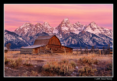 Pastel Morning (James Neeley) Tags: landscape wildlife moose wyoming tetons hdr grandtetonnationalpark gtnp mormonrow antelopeflats 5xp moultonbarn jamesneeley