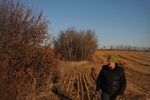 Walking the West fence line