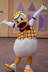 Donald Duck (Random)