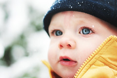 Wonder upon wonder. (Rebecca Tabor Armstrong) Tags: winter portrait snow tree hat yellow snowflakes dof bokeh vest 50mmf18