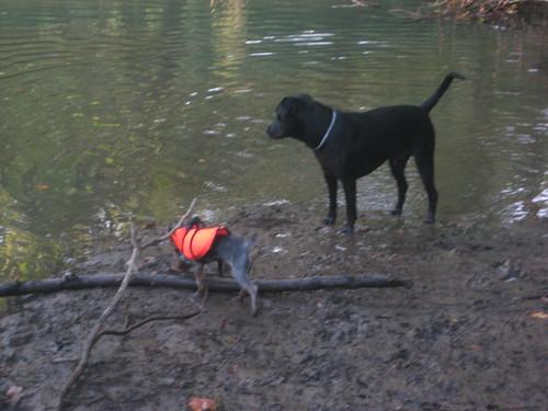 playing at river