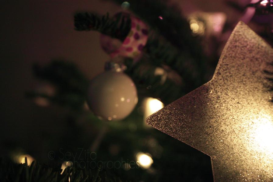 Noël 2009 #3