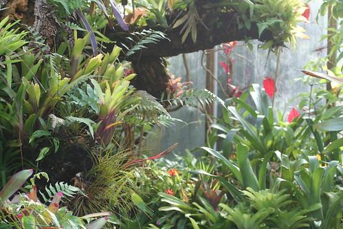 20090919 Edinburgh 20 Royal Botanic Garden 282