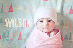 Baby MC (maureenwilson) Tags: girl hat photography naturallight fabric blanket newborn nikond700 maureenwilson 50mm14g