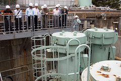 Tokai Daini Nuclear Power Plant (02810451)