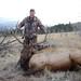 John Shiesl Elk2