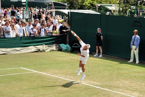 Wimbledon 3224