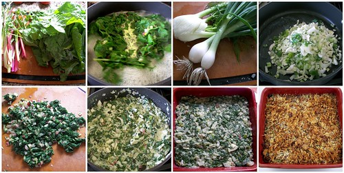 Making the Swiss Chard and Fennel Gratin