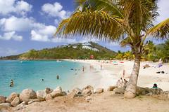 Family Beach (Fabi Fliervoet) Tags: beach island saintmartin stock stmartin tropical caribbean stmaarten sintmaarten netherlandsantilles saintmaarten fabifliervoet