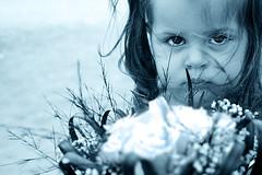 Adriana (Priscila Alonso www.facebook.com/viviridis) Tags: family blue portrait cold flower eye grancanaria familia azul ojo nikon child serious retrato flor adriana canarias niña cousin prima frío seria lascanteras cruzadas d80 ltytrx5 ltytr1 6retos6 fotoconcursos tienesunamejor elmundoaunsoloclick