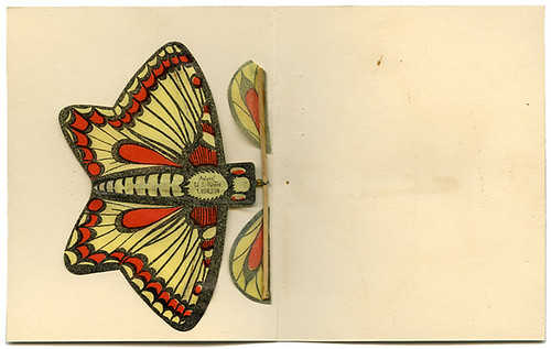 Butterfly Souvenir Card_back_tatteredandlost