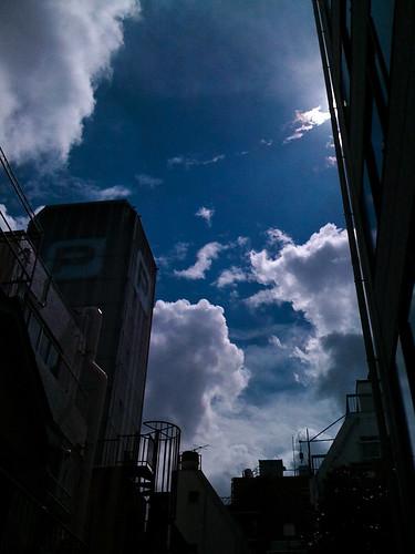IMG_0230.jpg