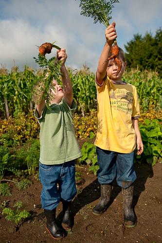 farmboys-218