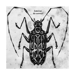 the notwist - boneless (pearpicker.) Tags: illustration bug drawing vinyl cover single boneless notwist pearpicker