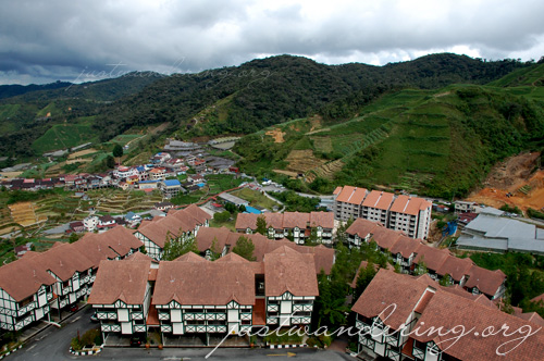 Cameron Highlands 18