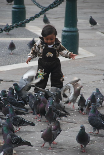 Child with pidgeons, Lima Peru Catacombs