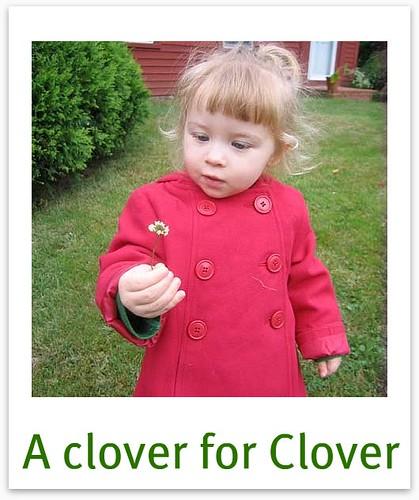 A clover for Clover