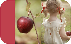 Red Delicious (bootsieking) Tags: mishalulu applecurls
