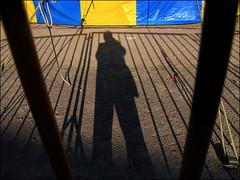 Gigante do circo (ccarriconde) Tags: azul brasil circo sombra ccarriconde cristinacarriconde grade amarelo pelotas corda copyrightcristinacarricondeallrightsreserved cristinacarriconde