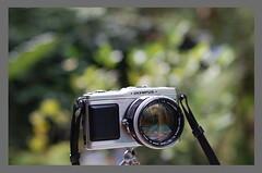 Olympus E P1 Canon (Juan Felipe Gómez T) Tags: digikam olympusep1 ubuntulinuxgnu