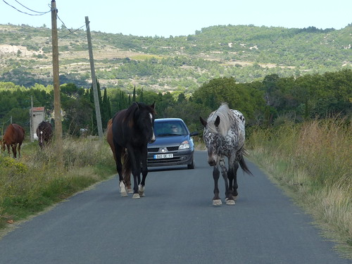 Traffic in the Minervois