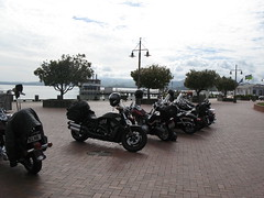 Parked up at Rotorua Lakeside (Mark and Lizzy) Tags: harley wellington hog labourday