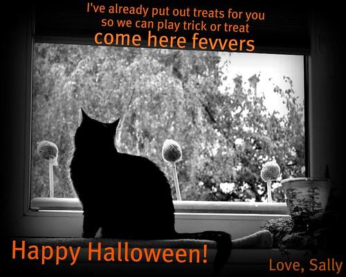 Weekenend Cat Blogging # 230 Happy Halloween!