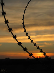 (SSNL_023) Tags: sunset two beautiful lines clouds wire roofs wires saturation parallel intensive