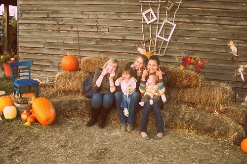 pumpkin patch 089