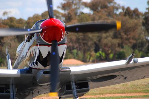 Spitfire_5783a