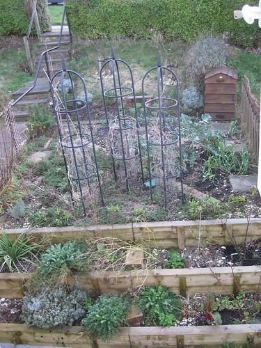 veg bed 12/2009