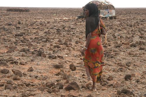 Northeastern Kenya 16