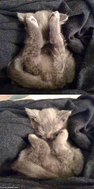 Yoga_Sleep